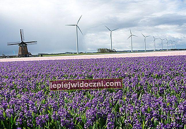 Zalety i wady nowej i odnawialnej energii