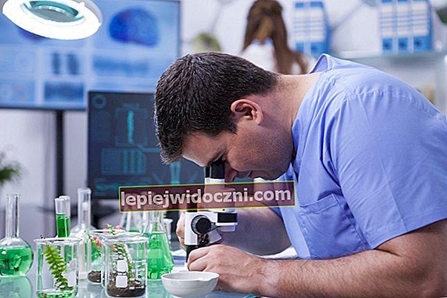 Zastosowanie biotechnologii w życiu codziennym