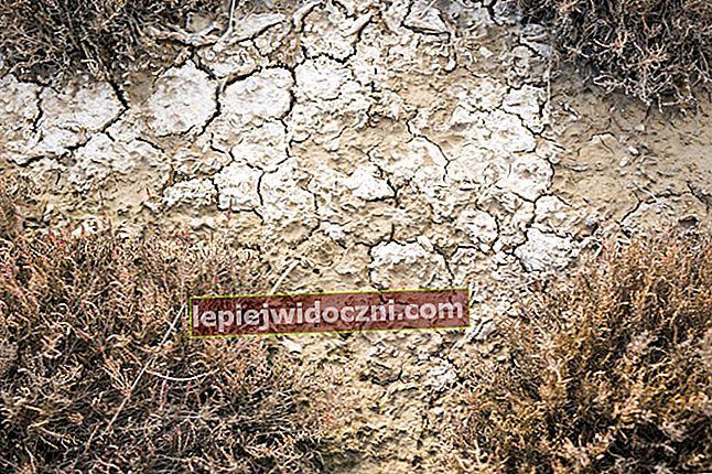 Zastosowania i rodzaje gleby
