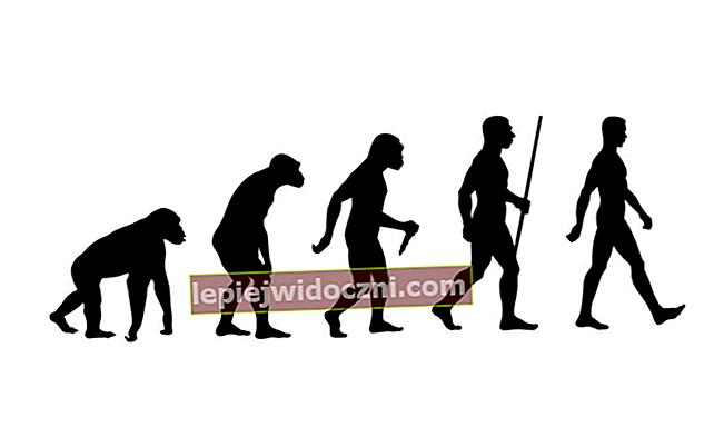 Wczesna historia ludzkości i jej rozpowszechnienie na świecie