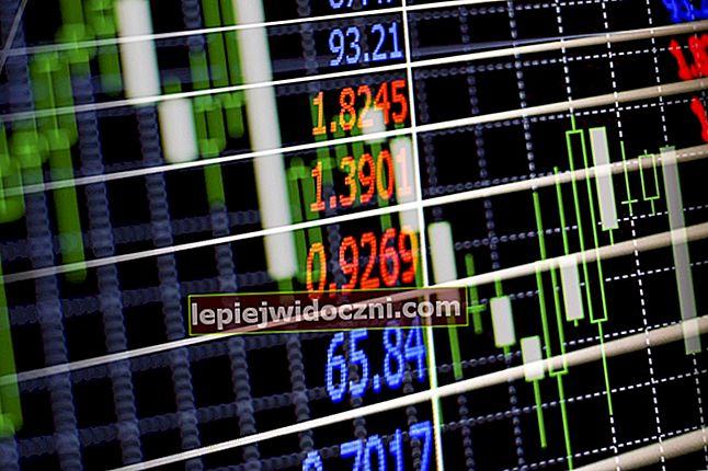 Z czego składają się instrumenty rynku kapitałowego?