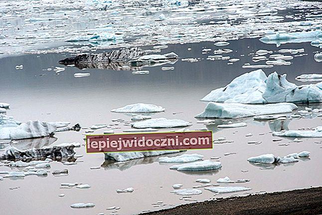 Dowiedz się o efekcie cieplarnianym